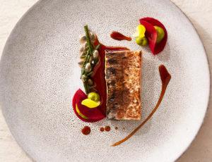 Makrele auf Salzstein gegart // Roter Sellerie // Ahornsud // Queller